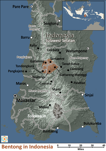 Map of Bentong in Indonesia
