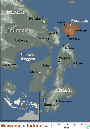 Map of Wawonii in Indonesia
